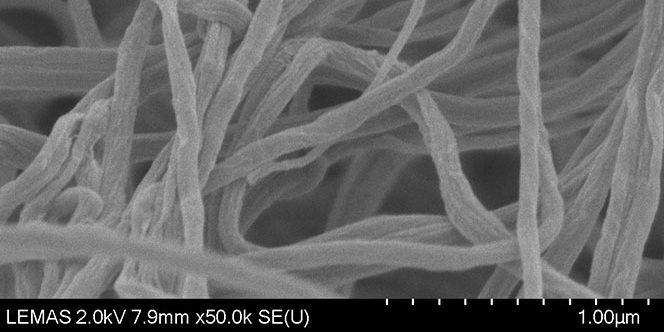 Fibrin fibres